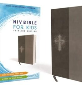NIV Bible for Kids 4250