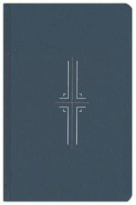 NLT Filament Bible - navy  3169