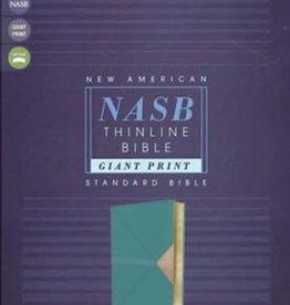 NASB Thinline Bible, Giant Print, teal - 1099