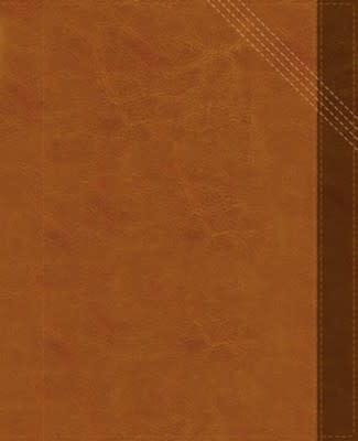 NIV Verse Mapping Bible 4601