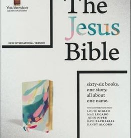 NIV Jesus Bible  Multi/Teal 4465