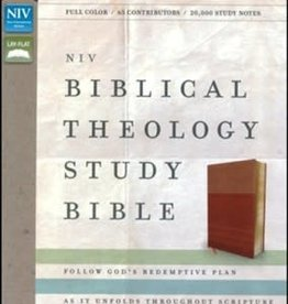 NIV Theology Study Bible 0504