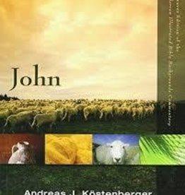 Kostenberger, Andreas J. John Commentary Vol. 2 8283