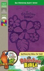 Zonderkidz NIrV Adventure Bible for Early Readers, purple 7446