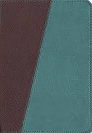 Teal/Brown Message Bible, teal/brown 5478