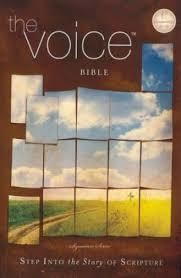 Thomas Nelson Voice Bible, The Paper 8494