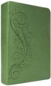 NASB - New Inductive Study, green NASB New Inductuve Study Bible, green 7175