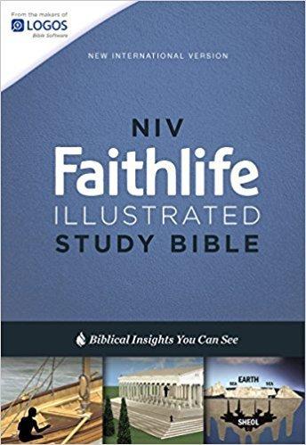Zondervan NIV Faithlife Illustrated Study Bible, Hardcover 0597