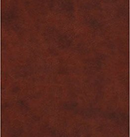Crossway Bibles ESV Large Print Value Thinline Bible 0263