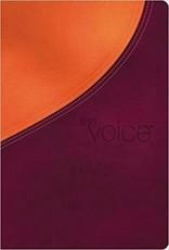 Thomas Nelson Voice Bible, Orange/Purple 2682