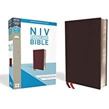 NIV Thinline Bible Red Letter 8792