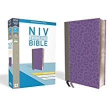 NIV Thinline Bible Giant Comfort Print Gray/Purple 8655