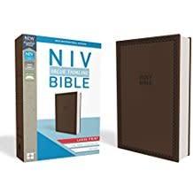 NIV Value Thinline Bible, Large Print 8532