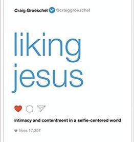 Groeschel, Craig Liking Jesus 3066