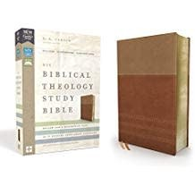 NIV Biblical Theology Study Bible tan/brown 0528
