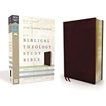 NIV Biblcal Theology Study Bible burgandy 0559