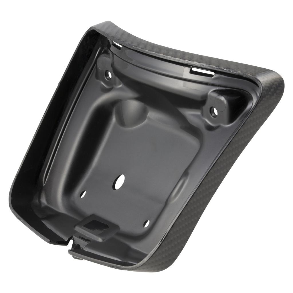 Parts Tail Lamp Frame, 2015+ GTS Carbon Fibre