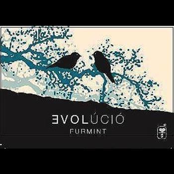 Evolucio Evolucio Furmint Tokaj 2017<br />Tokaj, Hungary