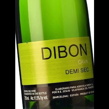 Dibon Cava Demi Sec<br /> Barcelona, Spain