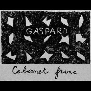 Gaspard Cabernet Franc 2017<br /> Loire, France