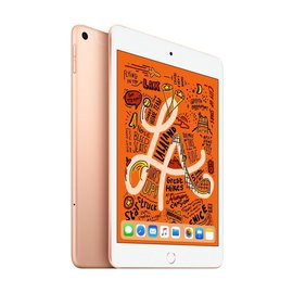 iPad mini Wi‑Fi + cellular {storage} {colour}