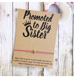 wishlets Wishlets- Promoted to big sister