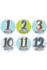 Sticky Bellies Milestone Sticker