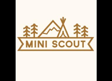 Mini Scout LLC