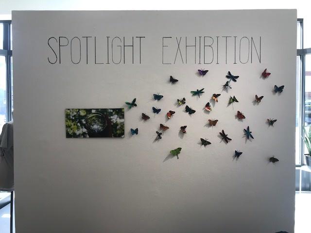 Spotlight Exhibition: EcoWorks 2019