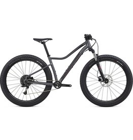 18 Specialized Ruze 6Fattie