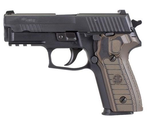 Sigsauer Sig Sauer P229 R Select 9mm 3.9In SIGLITE Night Sights 2-10Rd