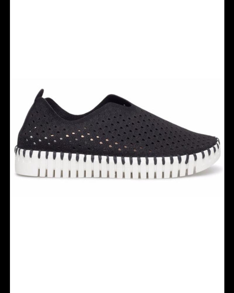Ilse Jacobsen Tulip Shoe In Black