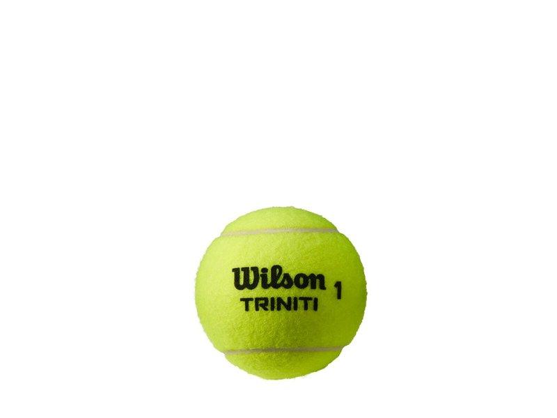 Wilson Triniti All Court Tennis Ball 24 Can Case