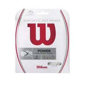 Wilson Synthetic Gut Power String