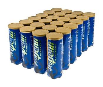 Penn Pro Penn Marathon Extra Duty tennis balls 24/case
