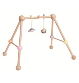 Plan Toys, Inc Play Gym