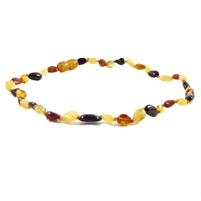 Amber Monkey Polished Baltic Amber 10-11 inch Necklace - Multi Bean Screw Clasp
