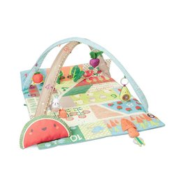 Skip Hop Farmstand Grow & Play Vegetable Activity Gym