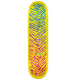Real Zion Wright 8 inch wide - Break Through