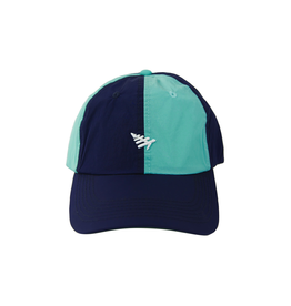 PAPER PLANES ICON REMIX DAD HAT
