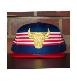 Mitchell & Ness CHICAGO BULLS USA SPEED SKATE SNAPBACK