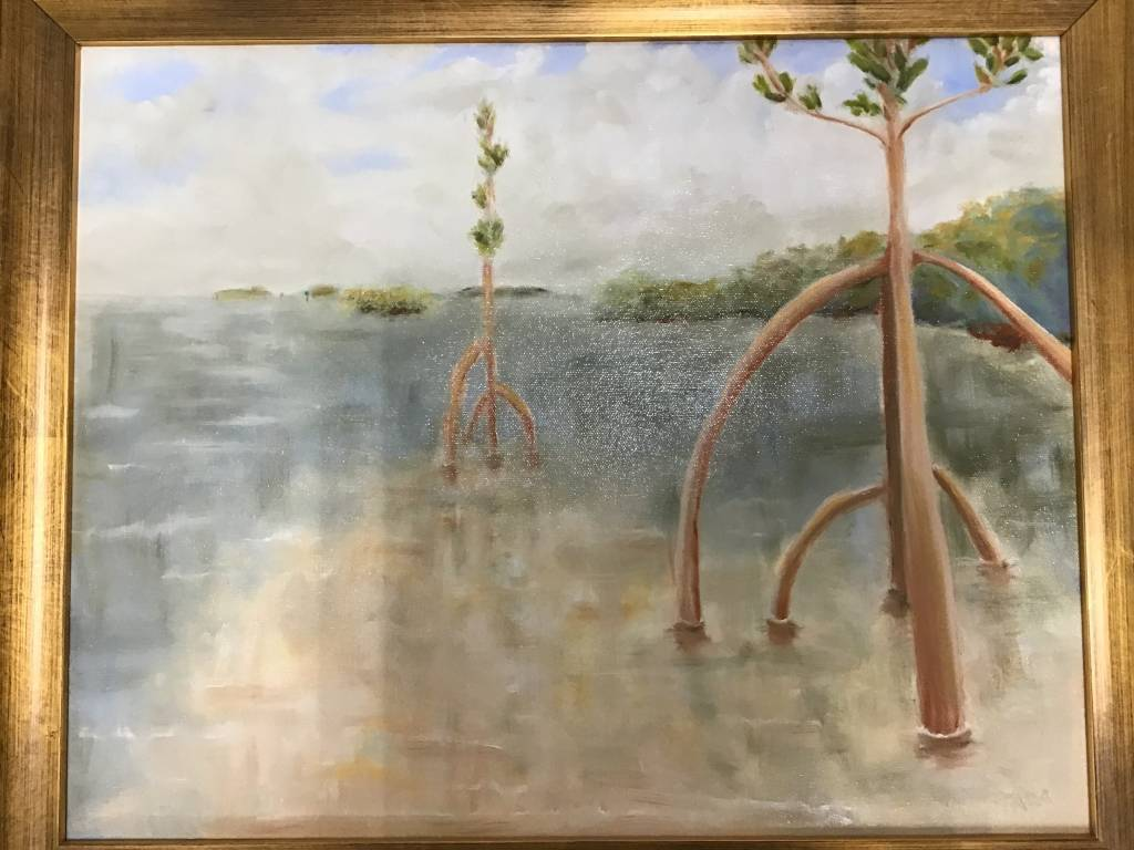 Mangrove Nursery 16x20 Framed