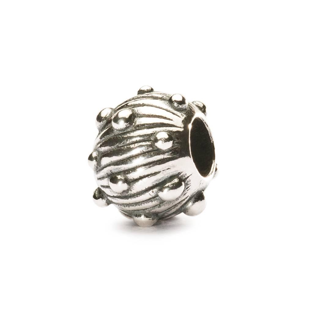 Silver Sea Urchin TAGBE-20042