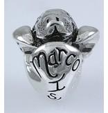 Marco Island Baby Manatee