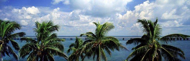 Road To Key West 886 60x18