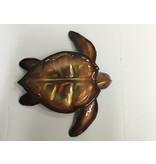 Copper Sea Turtle Lge 12X12 Clear Coat