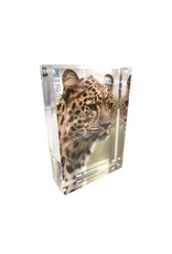Canetti Design Group Prestige Magnet Frame 4x6 Clear