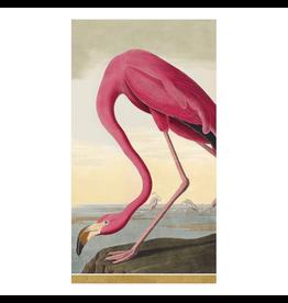 Caspari Audubon Birds - Guest Towel