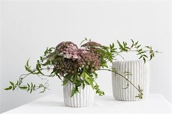 """Haven Vase - 5x5"""""""