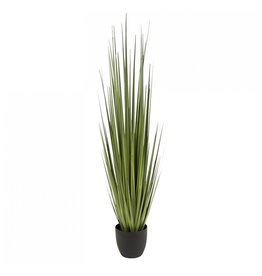 """Potted Century Grass - 60""""H"""
